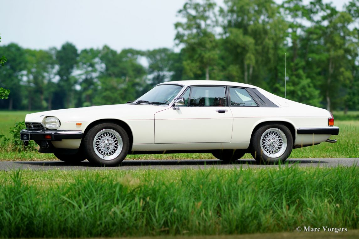 jaguar xj s v12 coupe 1987 classicargarage de. Black Bedroom Furniture Sets. Home Design Ideas
